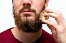 migliore spazzola barba